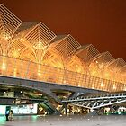 Gare do Oriente. Architecture. Lisbon.  by tereza del pilar