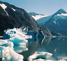 ICE CASTLE ON THE LAKE by judyann
