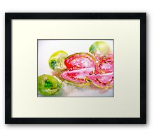 Guavas at the George St Market Framed Print