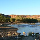 Victoria River Camping area. Northern Territory  by Virginia  McGowan