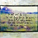 Do Not Wait For Life - Sunlit meadow mixed media by DanielleQ