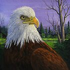 Proud American - Bald Eagle by Rich Summers
