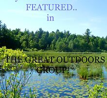 TEMP BANNER FOR GREAT OUTDOORS GROUP by linmarie
