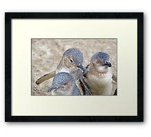 Let's Huddle Together! Framed Print