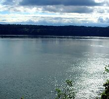 Puget Sound 04 by DelitefulDee