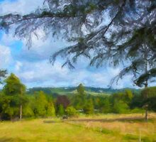 North Downs Surrey- natures best countryside by john247
