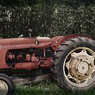 Old Farm Tractor by Steph Peesker