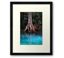 Reflective Beauty Framed Print