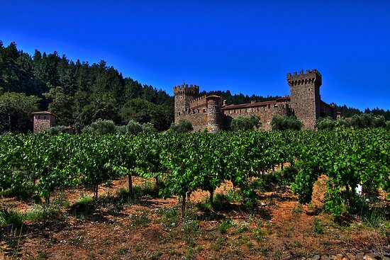 Castello Di Amorosa by flyfish70
