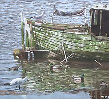 boat wreck with sea birds by martyee