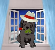 (¸¸.♥➷♥•*¨) ♪ ♫  How Much Is That Doggy In The Window ♪ ♫ (¸¸.♥➷♥•*¨) by ╰⊰✿ℒᵒᶹᵉ Bonita✿⊱╮ Lalonde✿⊱╮
