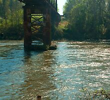Flint River Railroad Bridge by BenSellars