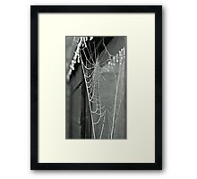 He learned that the world is like an enormous spider web ... Framed Print