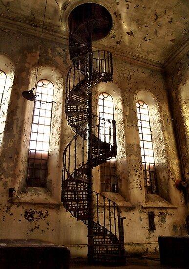 downward spiral by tom  adamson