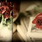 My Beloved's Roses by Aimee Stewart