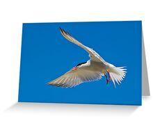Flying V  Greeting Card