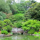 Japanese Garden at Brooklyn Botanical Gardens  by Alberto  DeJesus