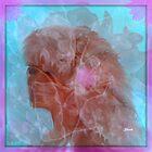 SHERRI -DAWN..COOKIE...FOR MEET THE MEMBERS... by Sherri     Nicholas