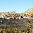 Uintah Mountains, Mirror Lake Highway by Ryan Houston