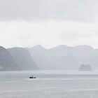 The Rain over Ha Long Bay - Vietnam by Cameron Christie