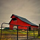 The Old Red Barn ~ Plainview Oregon ~ by Charles &amp; Patricia   Harkins ~ Picture Oregon
