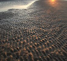 Golden Grooves, Findhorn Bay, Moray Firth by jamieweeden