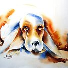 Wacky Dog- by Bev  Wells