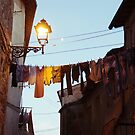 clothesline by monica palermo