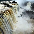 Devil&#x27;s Throat at Iguassu Falls, Brazil &amp; Argentina.  by Carole-Anne