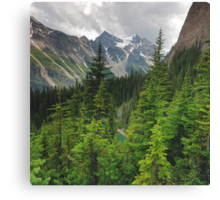 Ranges and trees Canvas Print