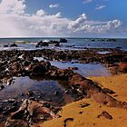 Mt Eliza Beach by Suziemgw