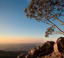 Mt Macedon, Victoria by Abbey Crute
