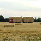 At the End of the Harvest !! by AnnDixon