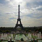 Paris 1 by Roelene Carleton
