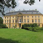 Trebnitz Palace by orko