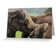 Tell me all about it son. Greeting Card