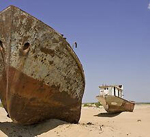 Wrecks on the seabed of the old Aral sea , Moynak , Uzbekistan , Central Asia by Thibaut PETIT-BARA