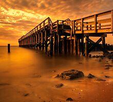 Delaware Bay Fishing Pier by Michael Mill