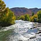 Animas River Durango, Colorado by ACBPhotos