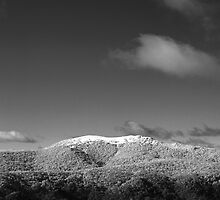 Mt Stirling, Victoria by Roberts Birze