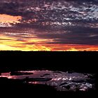 Sunset at the Watering Hole, Etosha, Namibia by opticallusion
