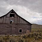Old leaning barn  by DiamondCactus