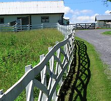 Farm and Fence by Frank Romeo
