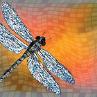 Dragon fly by Laschon Robert Paul