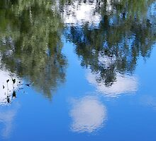 Reflections in the water by KatarinaD