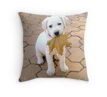 Patriotic Puppy Throw Pillow