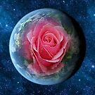 Pink Rose And Earth by Jonice