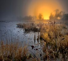 Fog Over The Duck Pond by Charles & Patricia   Harkins ~ Picture Oregon