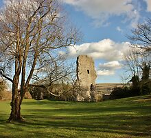 The Ruins of Bramber Castle 2 by Matthew Floyd