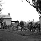 ruralscapes #141, follow the fence by stickelsimages